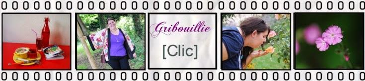 http://grib0uillie.blogspot.fr/