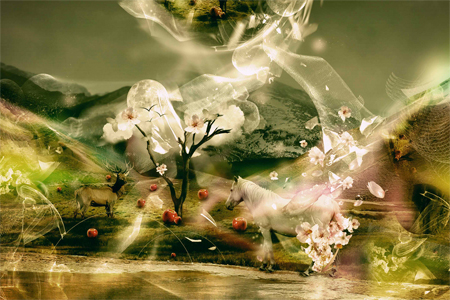 Nature Photo Manipulation: Igaer