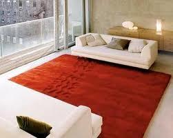 Como limpiar nuestra alfombra