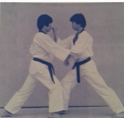 Traditional taekwondo ramblings taekwondo is not and has never been kukkiwon textbook 2006 straight forward application to what is usally seen as a double block gawi makki in taebaek poomsae fandeluxe Images