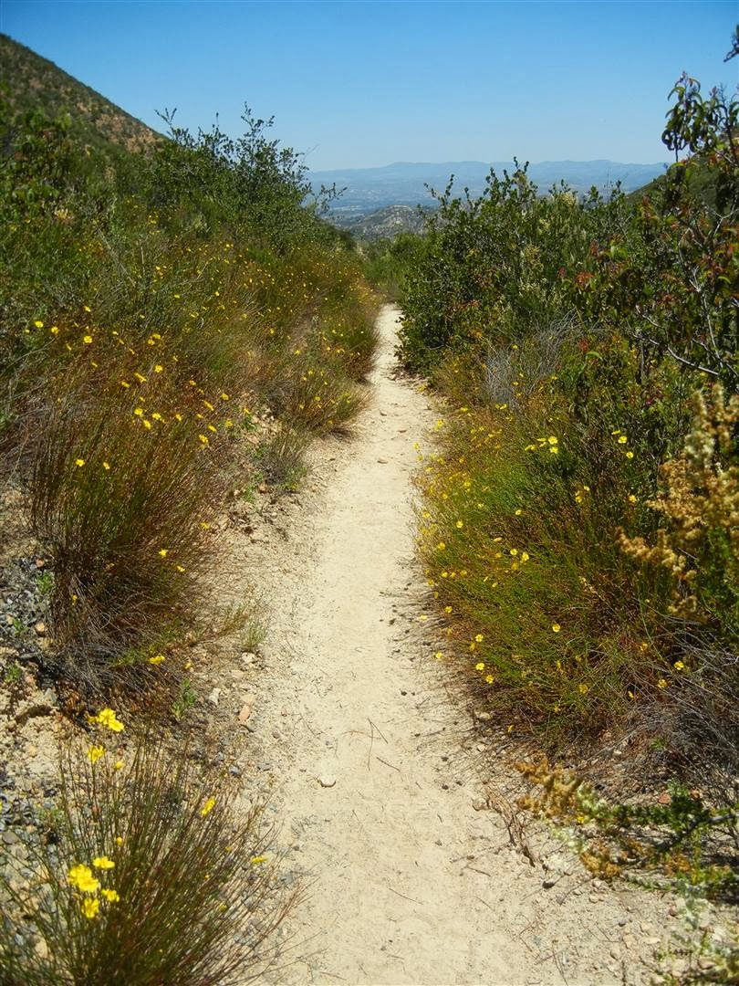 Desert mountain trail.