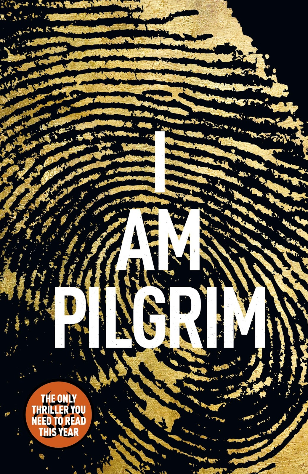 I Am Pilgrim by Terry Hayes review