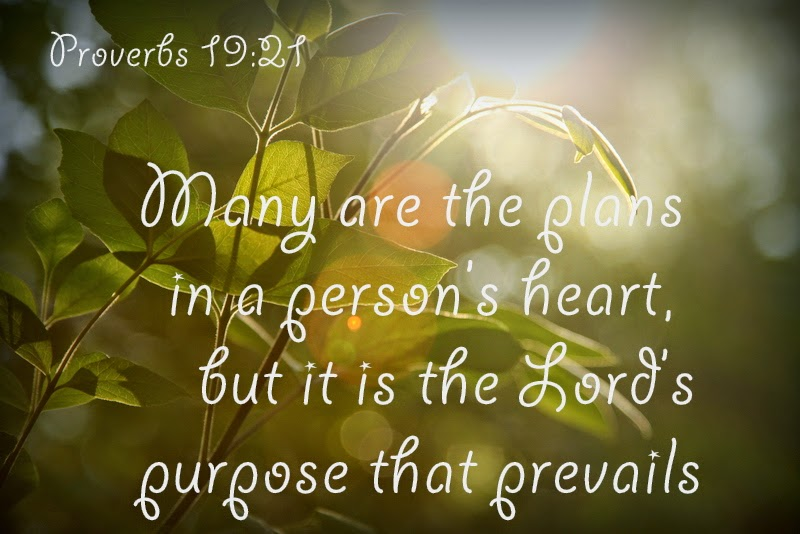many are the plans in a person s heart but it is the lord