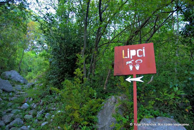 Указатель на дорогу к наскальным рисункам в Липцы Черногория