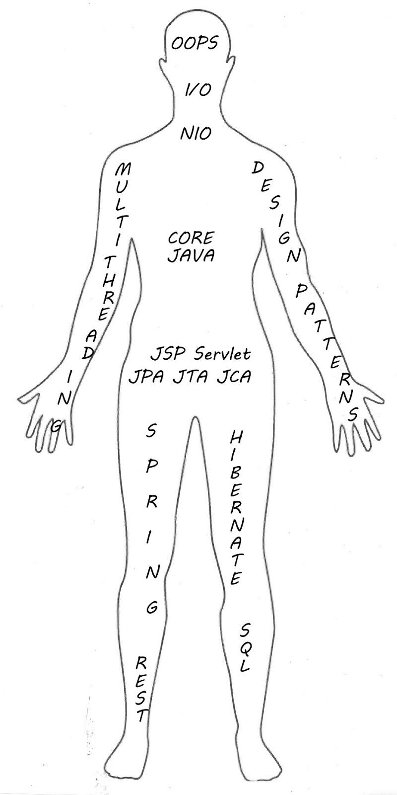 Java Developer Anatomy And Life Cycle Technology Strategy