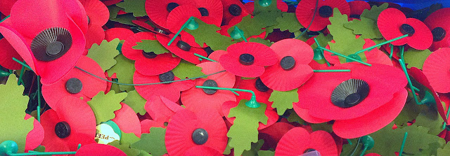 Royal British Legion Poppy Appeal Poppies