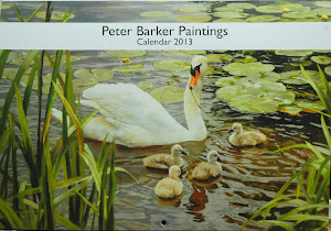 NEW! 2013 Calendar