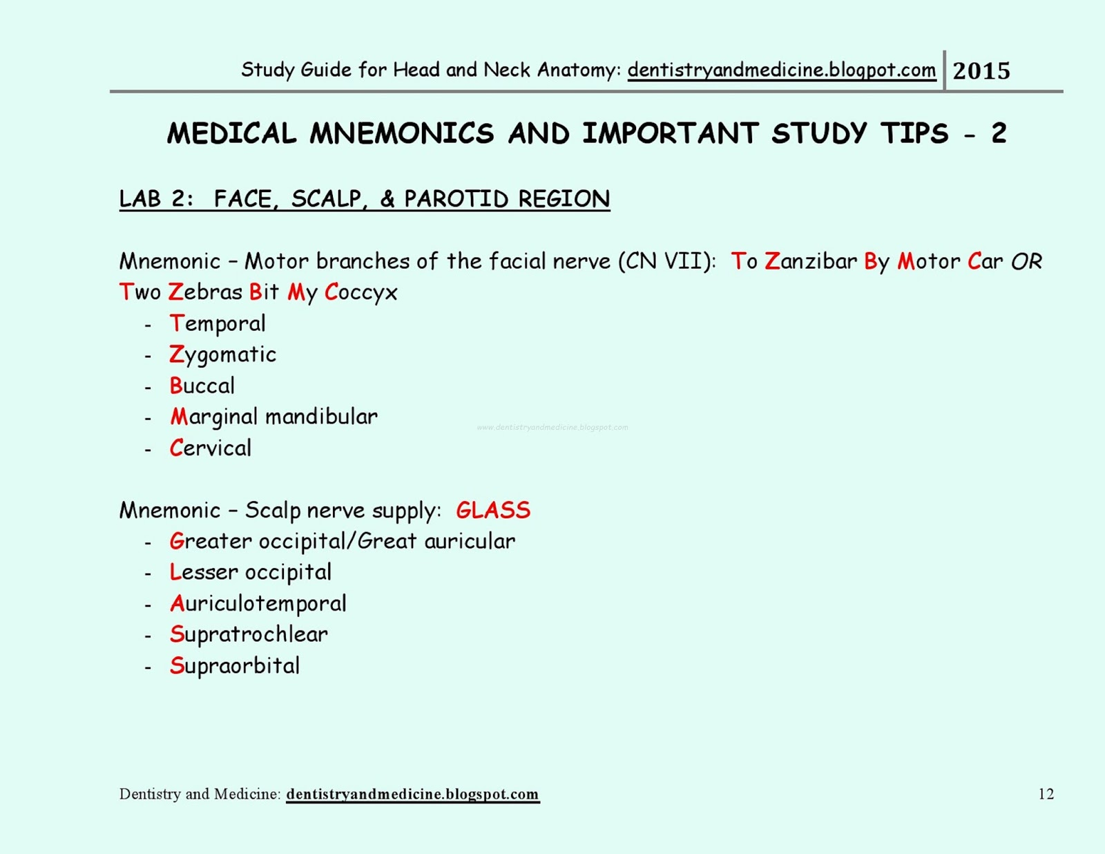 STUDY GUIDE FOR HEAD AND NECK ANATOMY - Medical Mnemonics ...