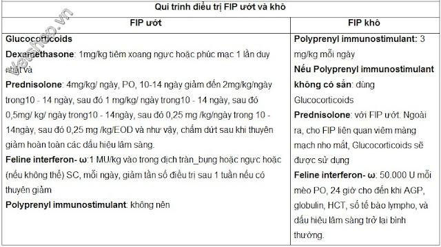 Hình 6: Quy trình điều trị FIP ướt và khô