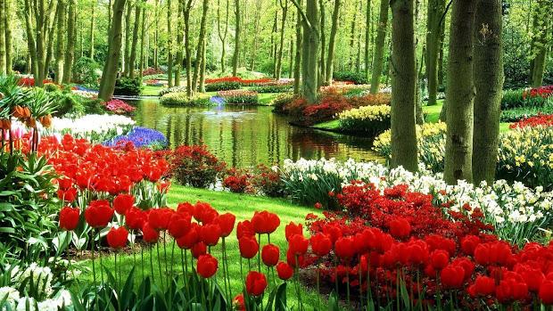 dynamic views beautiful spring