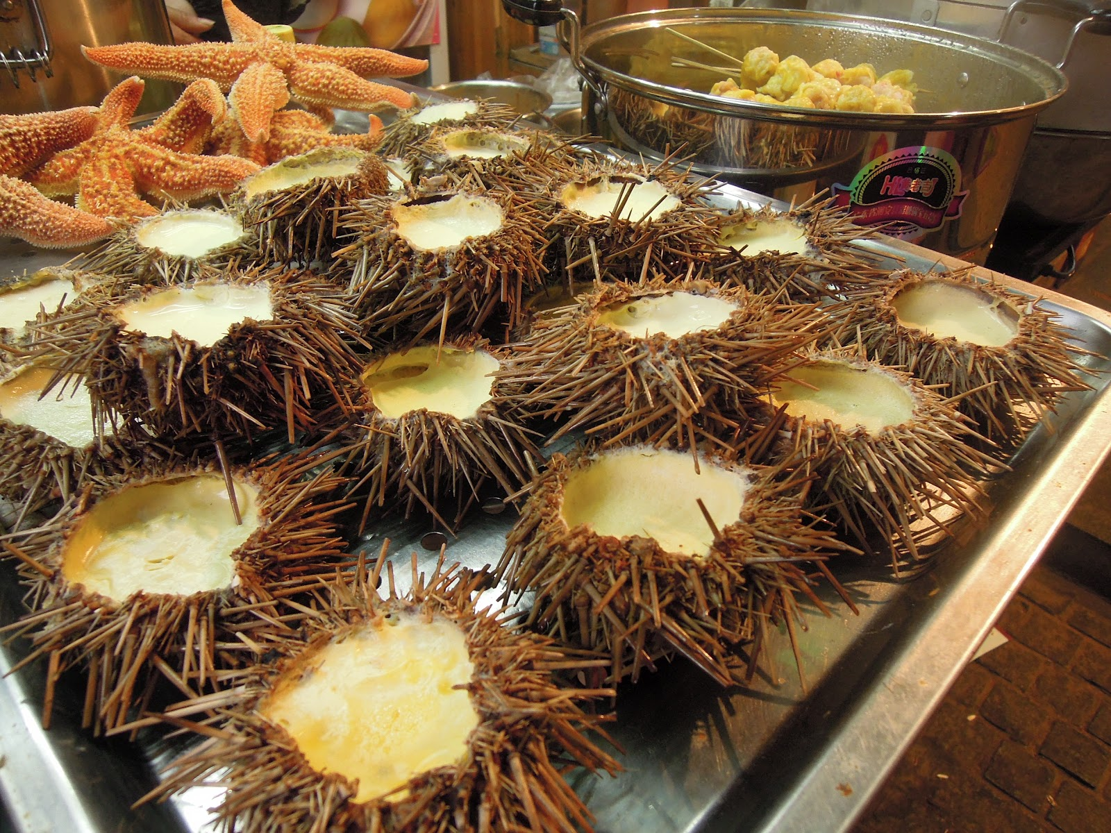 Field guide to chinese street food starfish