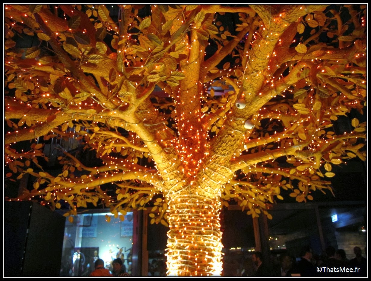 Magic Tree, Terrasse Sushi Samba arbre illuminé Sushi Samba Londres London