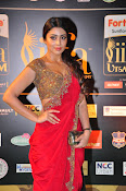 Shriya Sizzling in saree at IIFA Utsavam-thumbnail-13