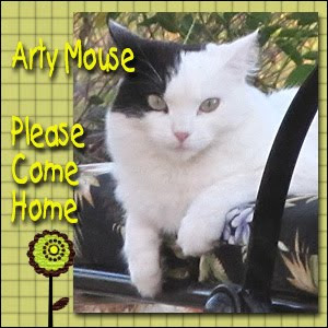 Purrs for Arty Mouse