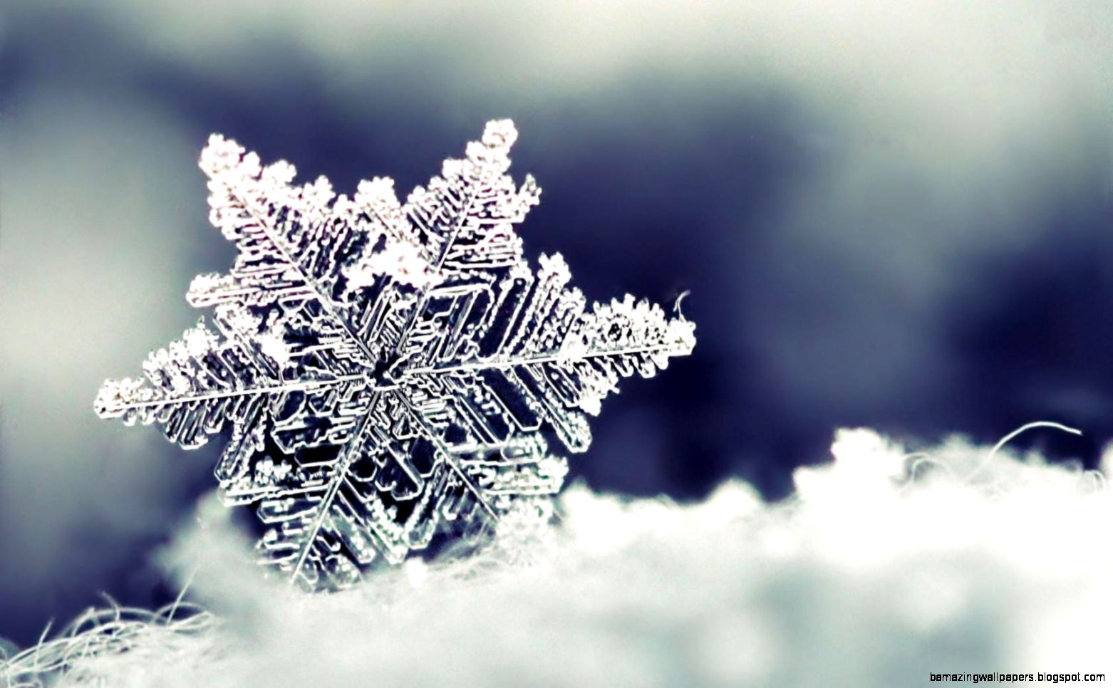Animated Snowflake Wallpaper Free Desktop  I HD Images