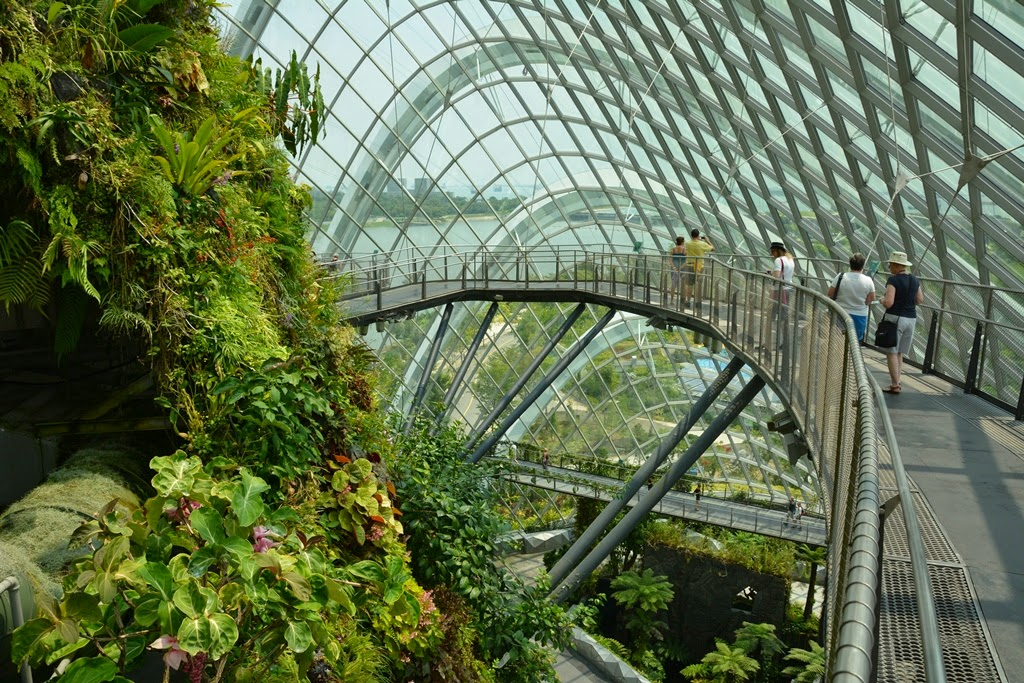 Cloud Forest Singapore mist trail
