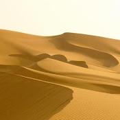 Si cubriesemos el 2.6% del desierto del Sahara con páneles solares, todas nuestras necesidades ener