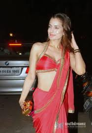 Amisha Patel hot and sexy bollywood actress images 3