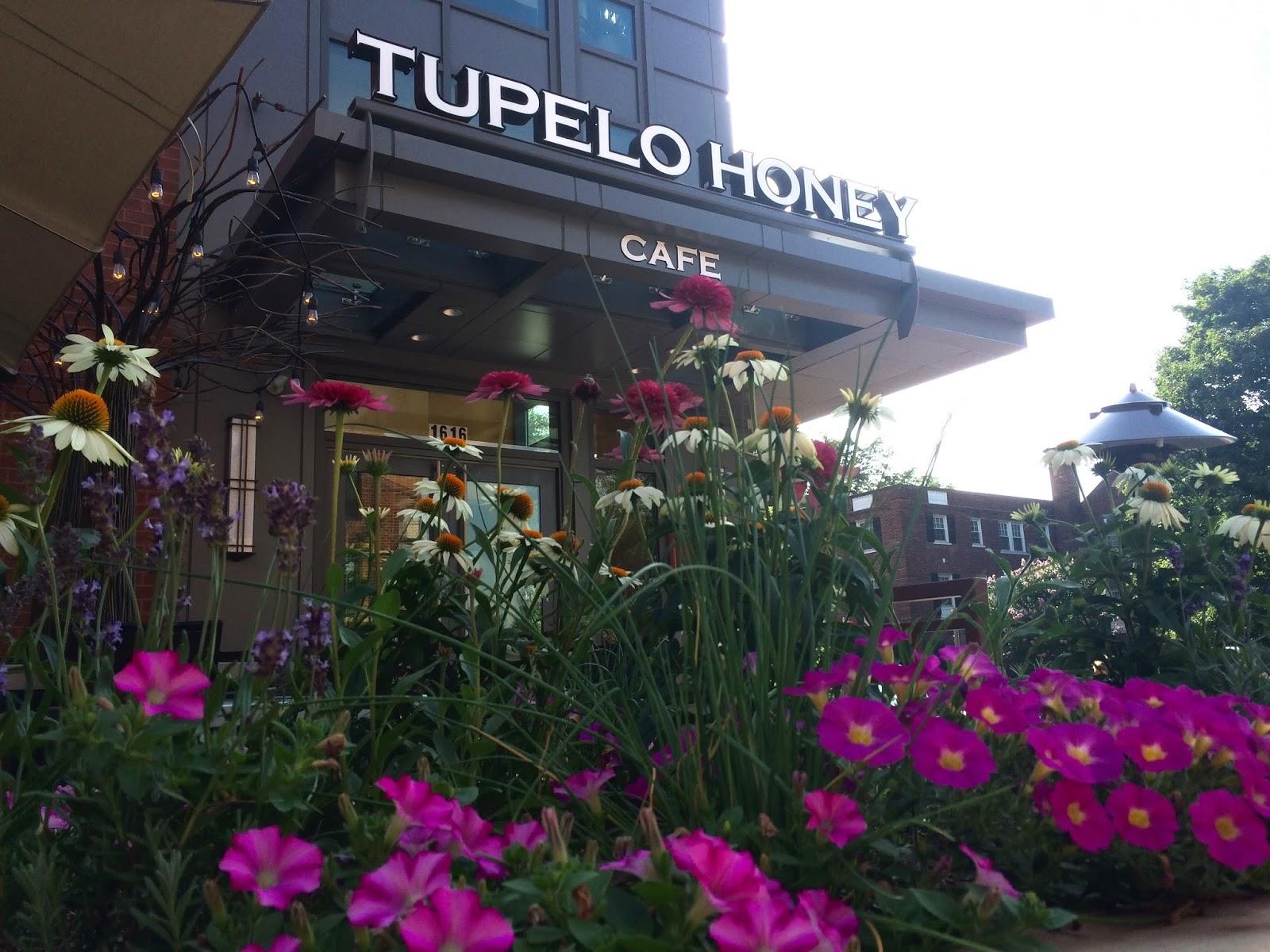 Restaurant: Tupelo Honey Cafe (Arlington, VA)
