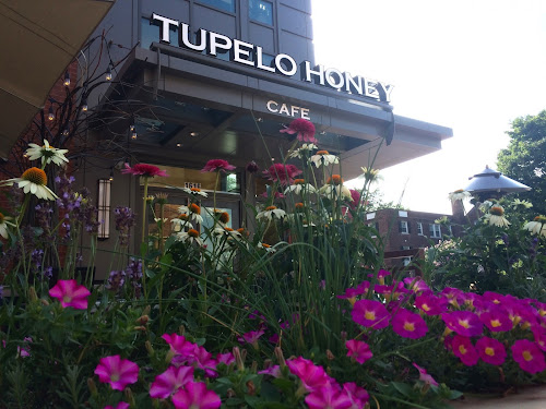 Restaurant: Tupelo Honey Cafe (Arlington, VA)