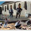 Φωτογραφία του μήνα Φλεβάρη 2012: Τεχνίτες, μαστοράδες και εργάτες