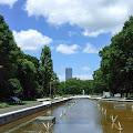 噴水,森林,盛夏,真夏,代々木公園〈著作権フリー無料画像〉Free Stock Photos