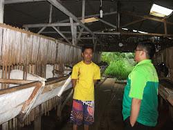 Kunjungan ke Peternakan Kambing Etawa tgl 19 Maret 2013