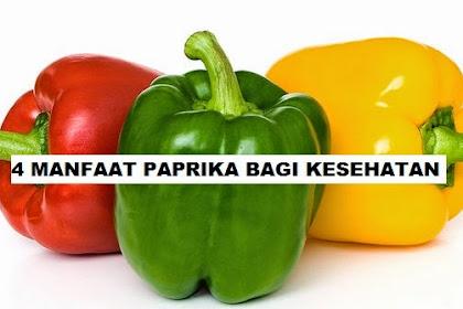 4 Manfaat Sayur Paprika Untuk Kesehatan