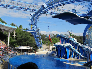 Seaworld Sea World Orlando Blue Horizons