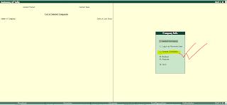 pdf manual tally