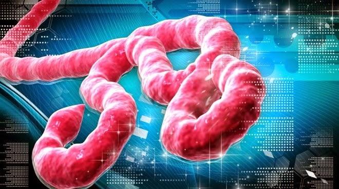 Miễn phí điều trị cho bệnh nhân nhiễm Ebola
