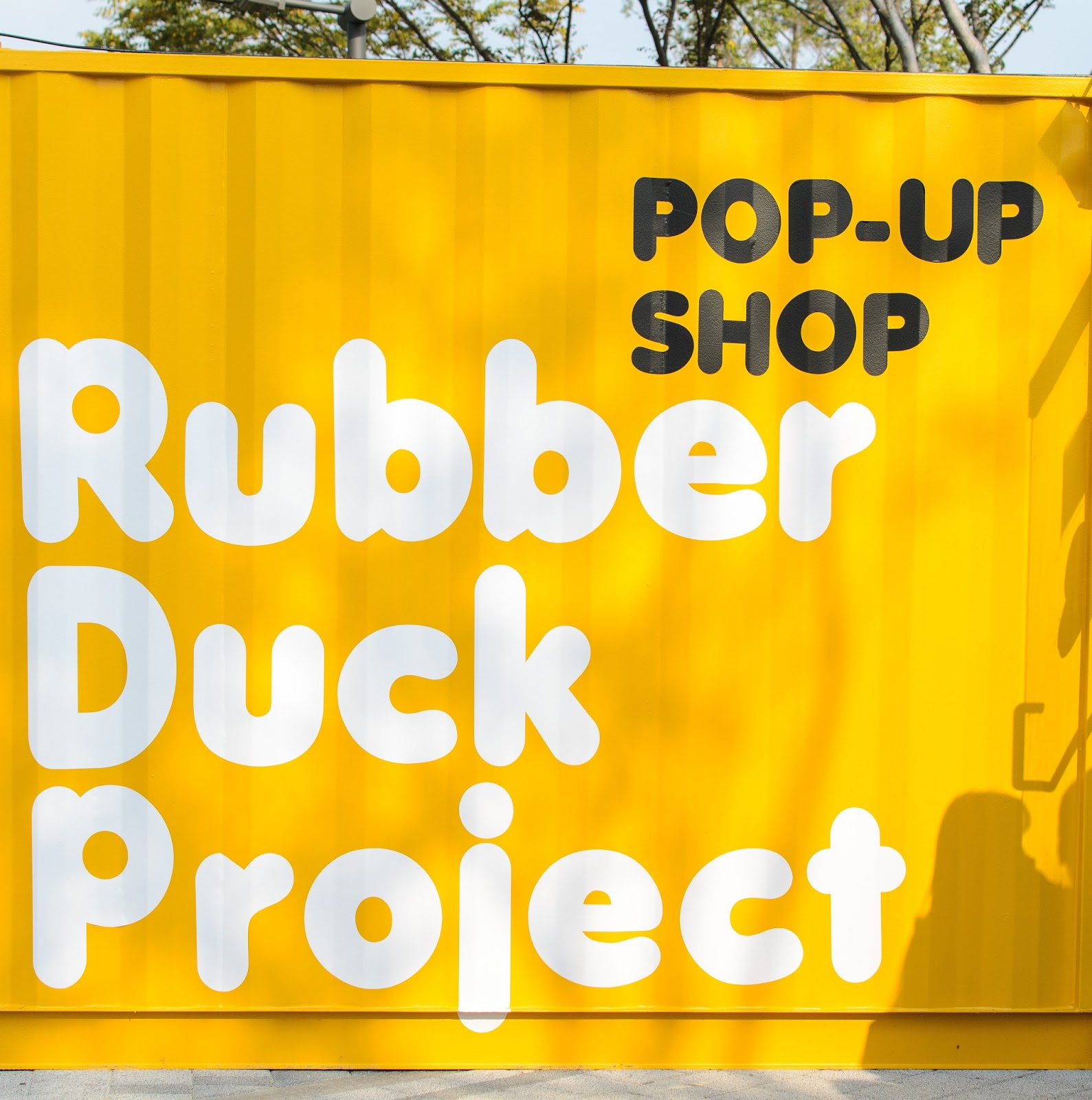 The rubber duck project