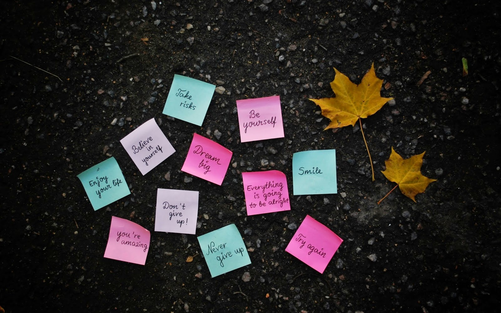 30 Best Life Quote Hd Wallpapers Hd Wallpaper Jos