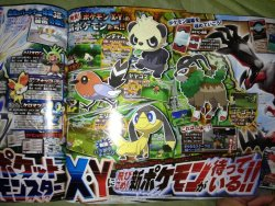Confirmed Evolutions for 6th Generation Starters