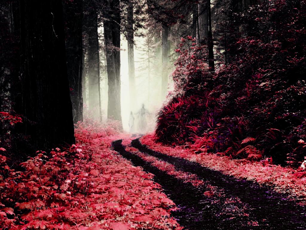 http://3.bp.blogspot.com/-Ft-eoscnCXc/TkM7dsGU8zI/AAAAAAAAK-E/odhHlVI7e_4/s1600/Ghosts_in_the_forest_by_jurgen182.jpg