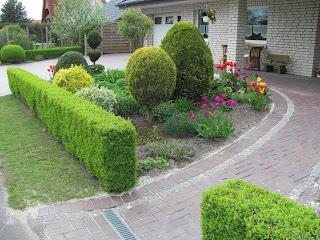 Garten anders februar 2013 - Vorgartengestaltung pflegeleicht ...