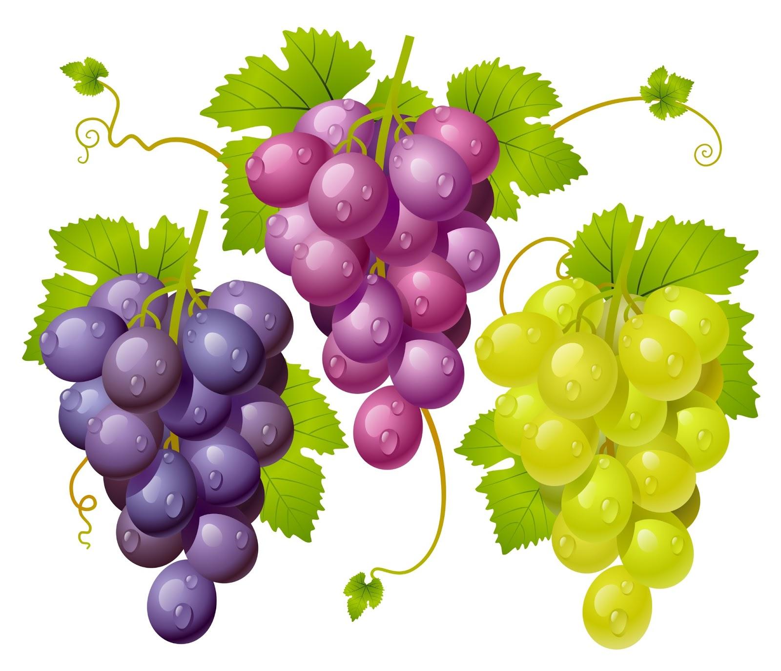 Racimo de uva animadas - Imagui