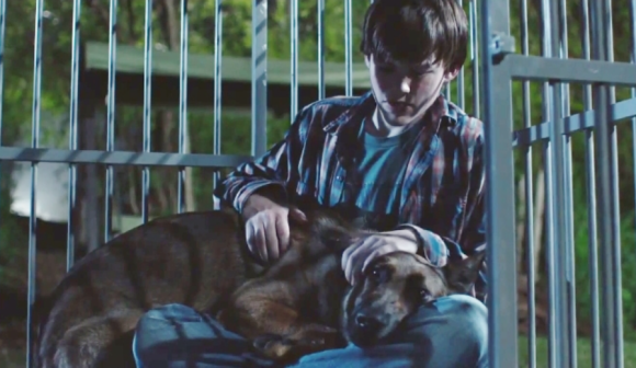 Something Cinematic : Max Review: Dog Film Both Sappy and ...
