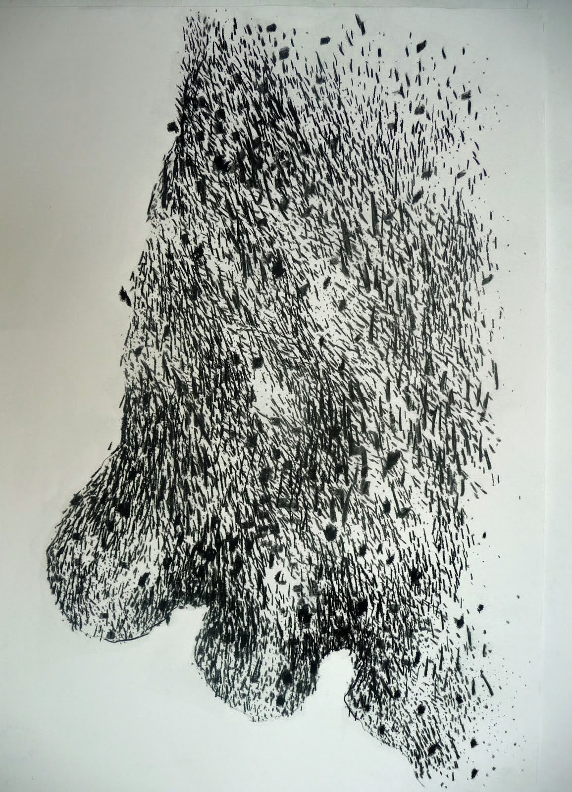 Fusain / papier 65x50 2014