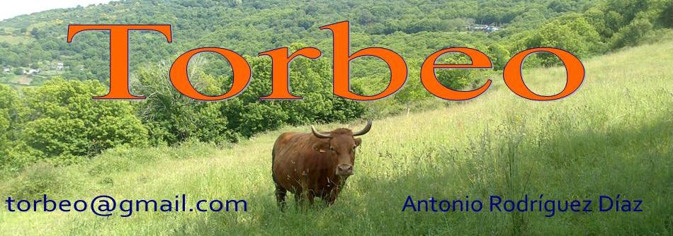 TORBEO