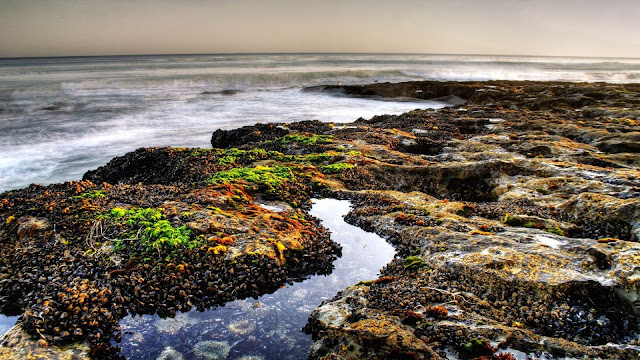 Pebbles of Beach