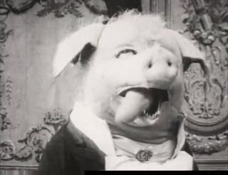 Dancing Pig 1907 BliZZarraDas: Le cocho...