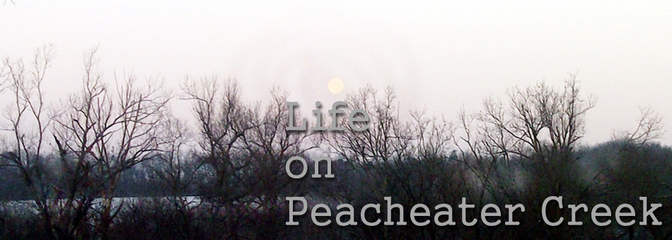 life on peach eater creek