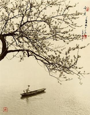 Fotografía de Don Hong Oai: barca y cerezos en Vietnam