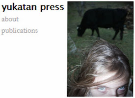 dirtyharrry in yukatan press