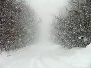 Badai Salju Melanda Indonesia