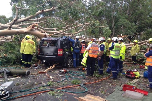 sydney-storm-damage-car-photo