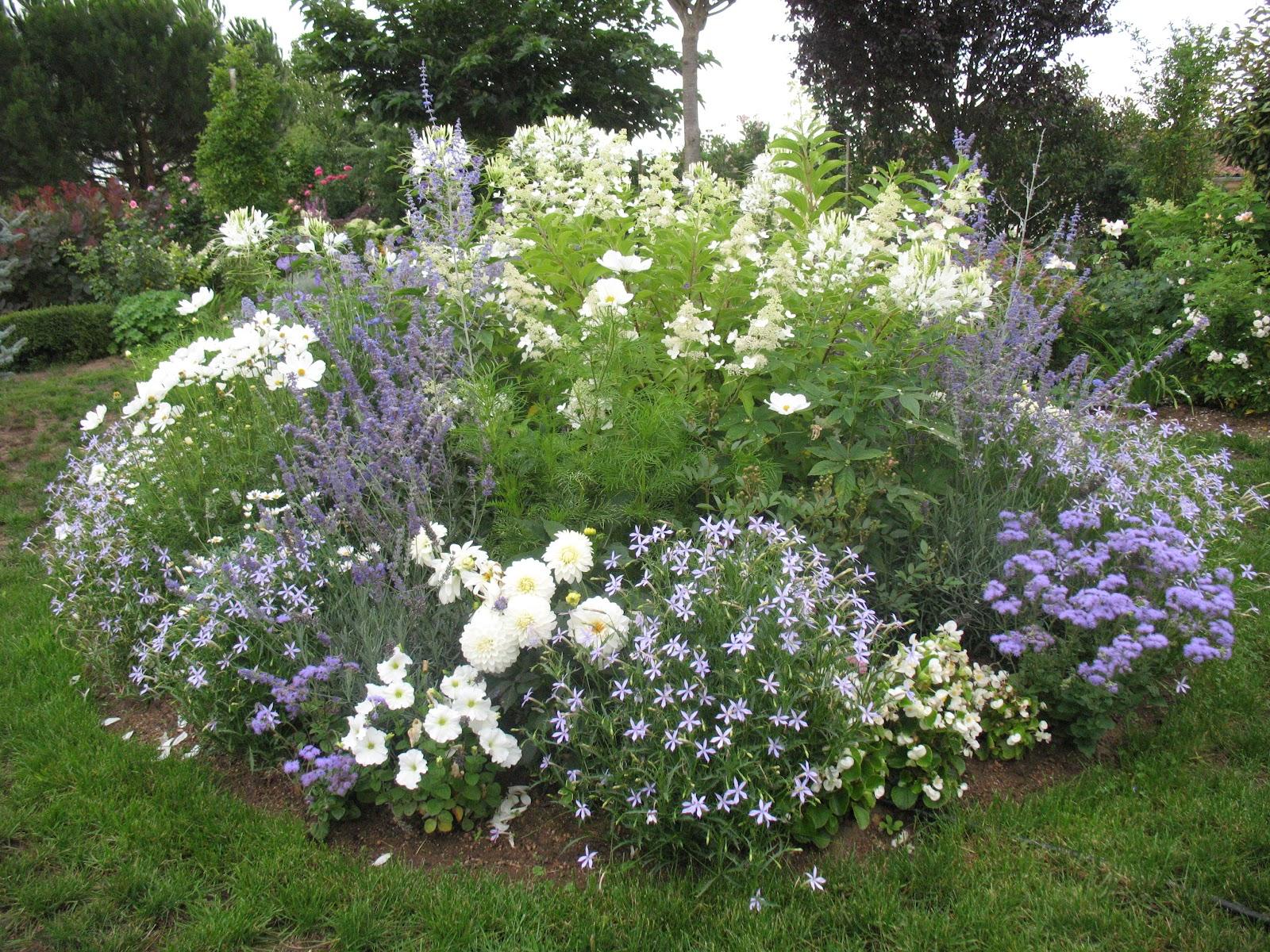 Roses du jardin ch neland le jardin au cours de la belle saison - Comment planter un hortensia ...