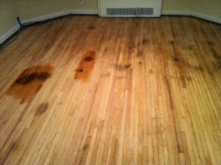 Facebook - How to get dog urine out of hardwood floors