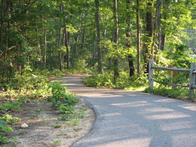 Bike Trail at Nickerson State Park